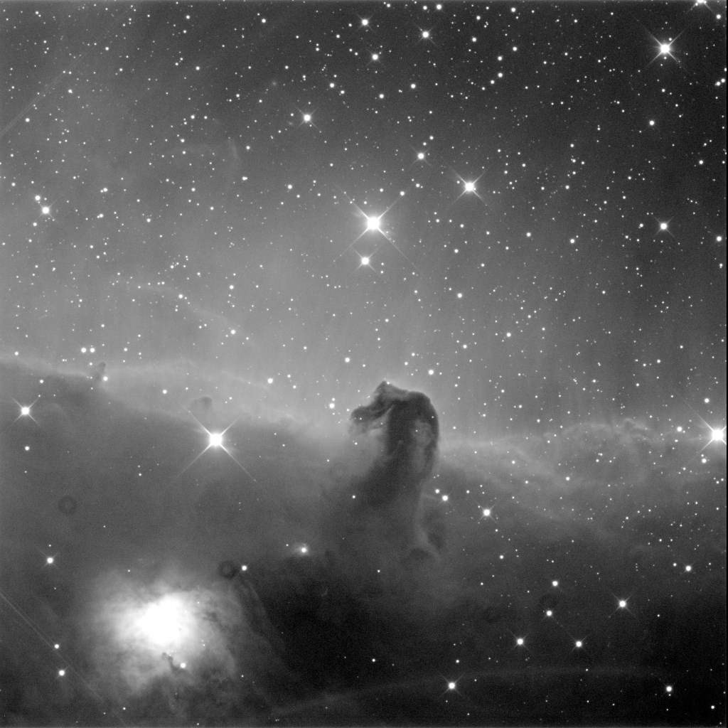 Horsehead and Hamburger Nebulae