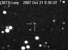Asteroid (3673) Levy [Winchester Observatory image]