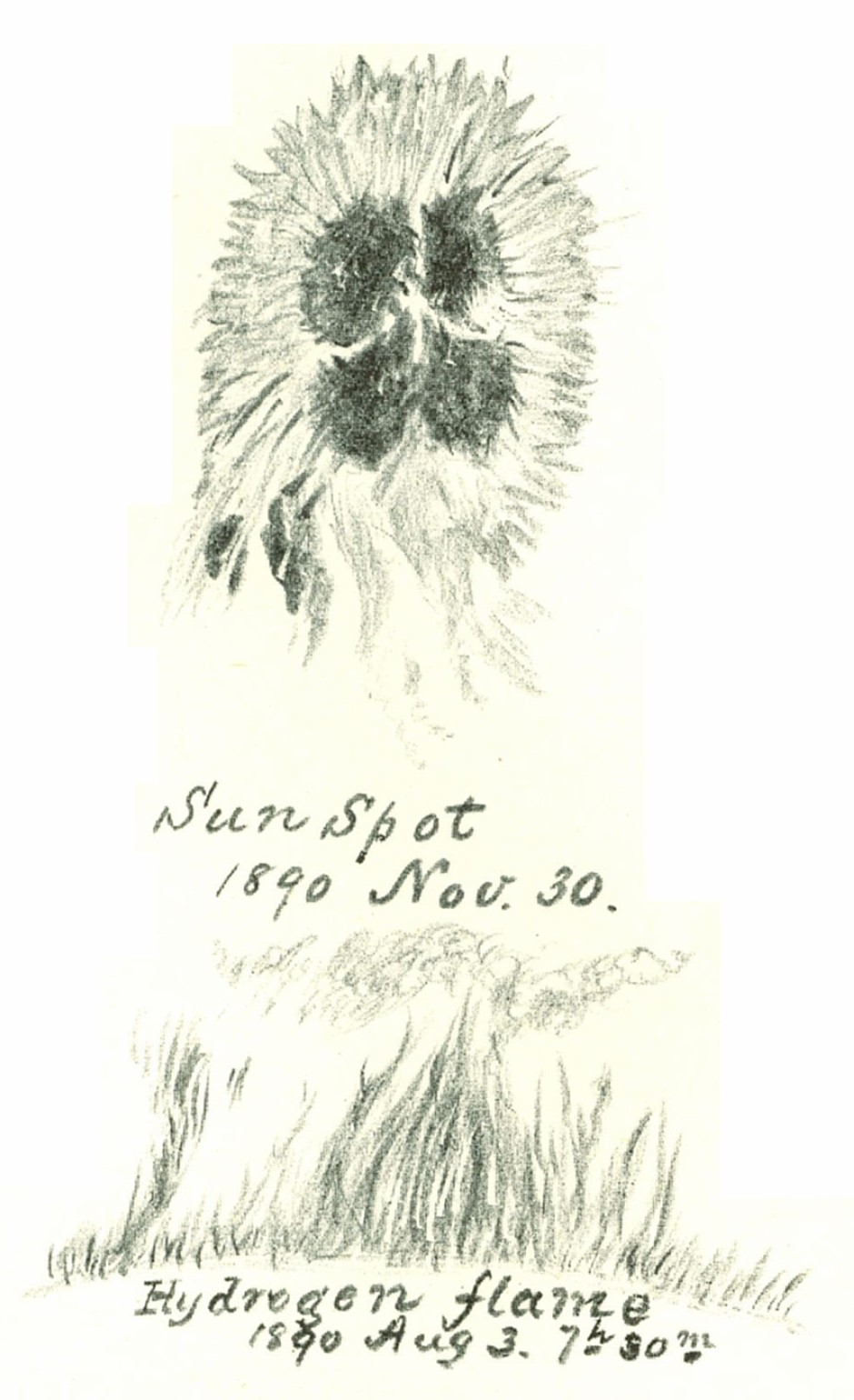 Sunspot Sketch 1890