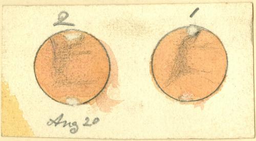 Mars 18920820