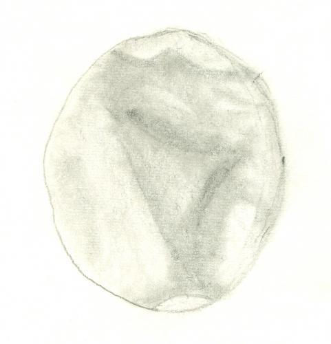 Mars 196102160305