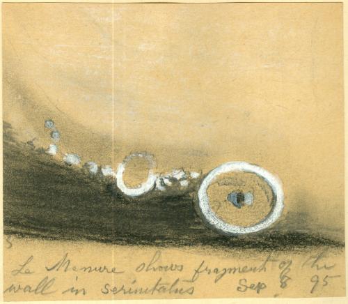 Moon Sketch 1895