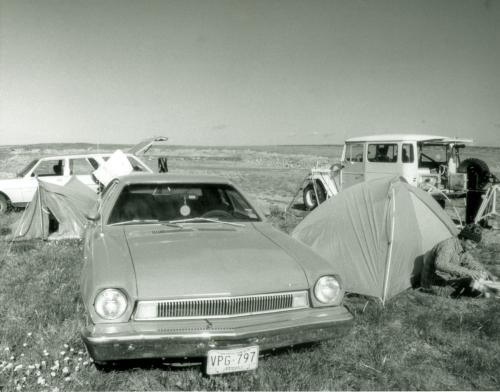 Observing 1979