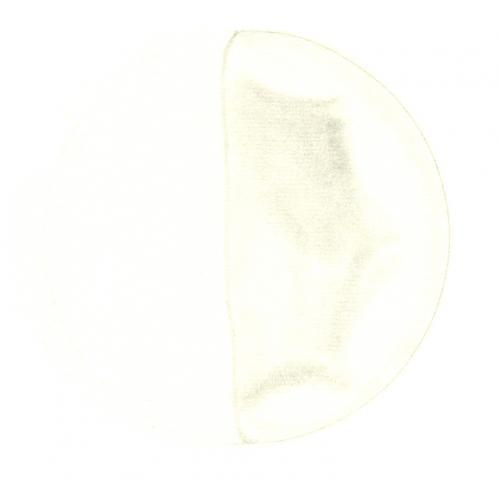 Venus 196107220810