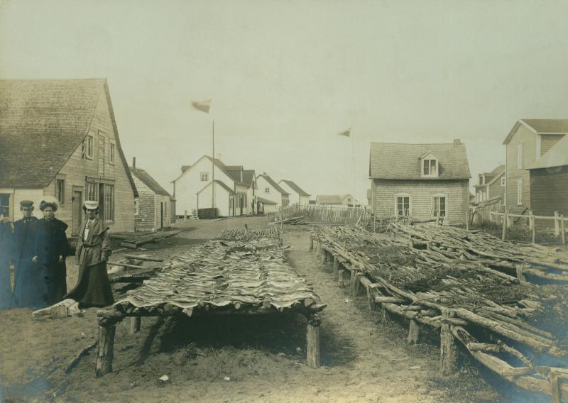 1905 Eclipse #21