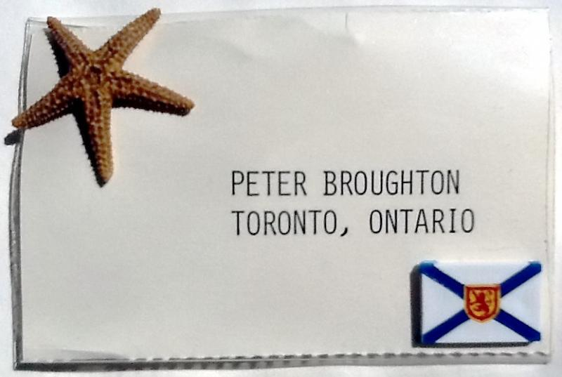 GA 1980 Badge