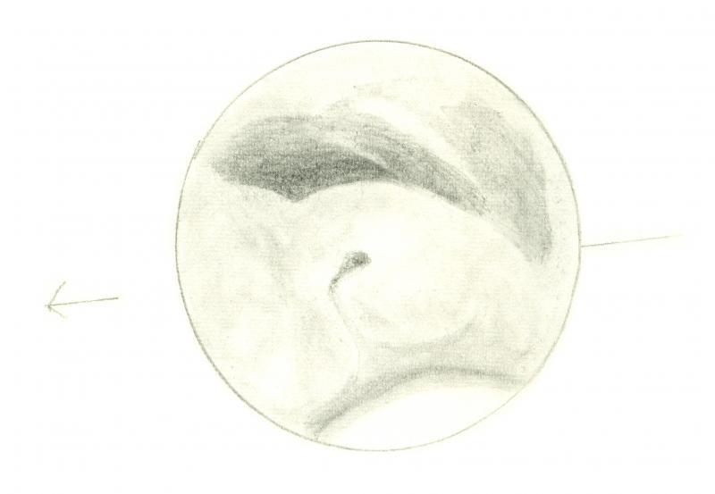 Mars 196012040400