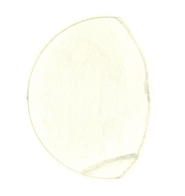 Venus 196010101955