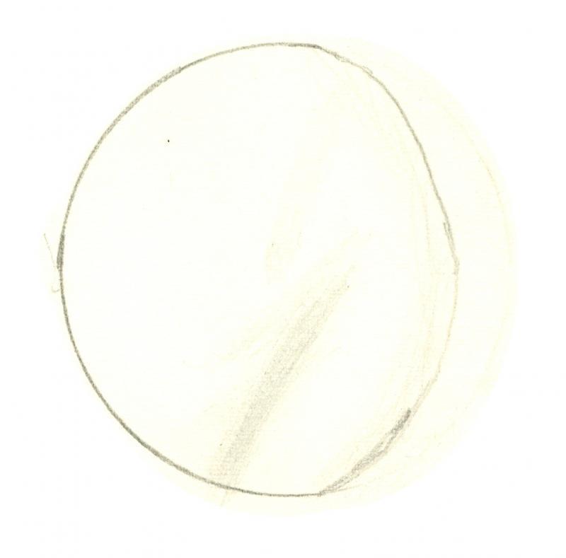 Venus 196010102000