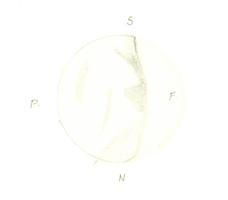 Venus 196012031855